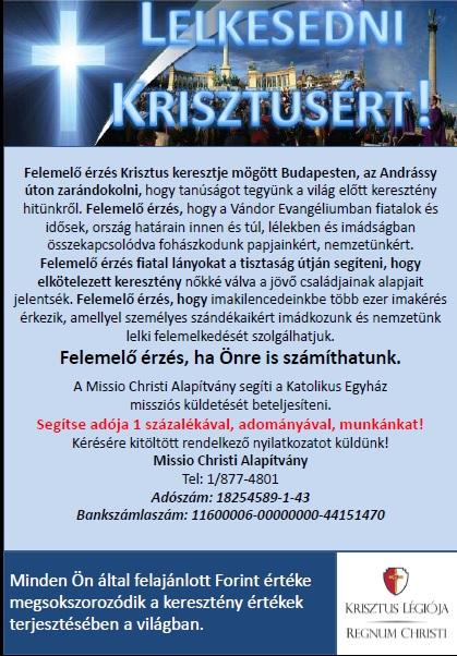 1szazalek_plakat